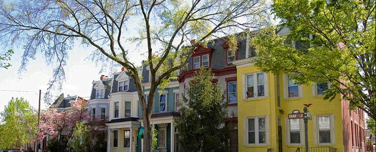 park-avenue-spring