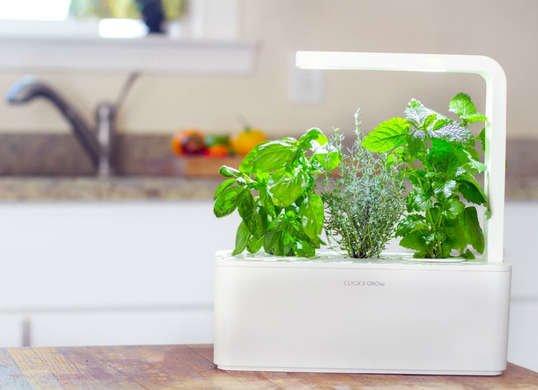 gadget_gift_guide_-_click_and_grow_garden